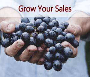 Sales Process Improvement, Austin marketing strategy questions